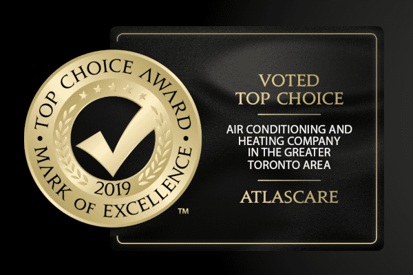 "Circular Gold Checkmark Logo that reads ""Top Choice Award Mark of Excellenc 2019"""