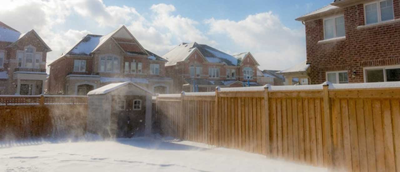 Blowing Snow in a Yard